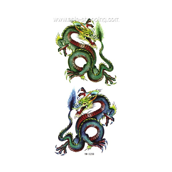 tatouage de dragon chinois free tatouage de dragon chinois with tatouage de dragon chinois. Black Bedroom Furniture Sets. Home Design Ideas