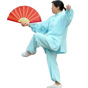 Eventail de Tai Chi ou Kung Fu